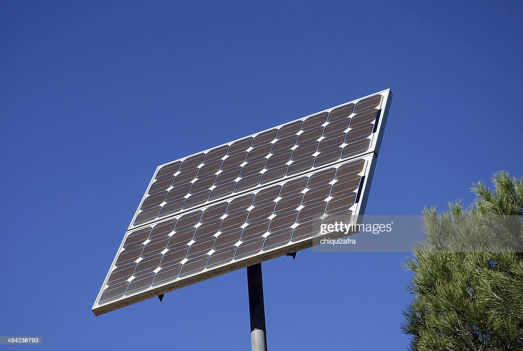 solar plate and  pine-tree : Stock Photo