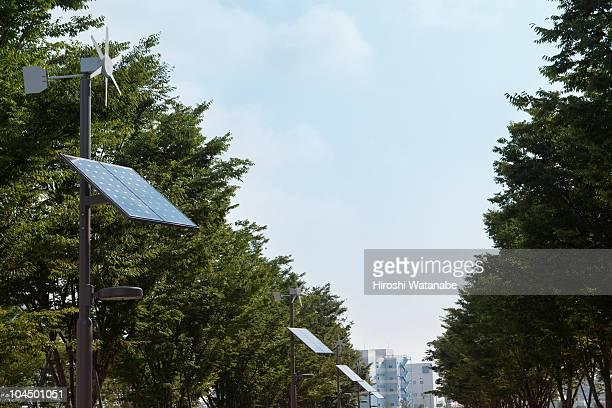 Solar power streetlights form a line