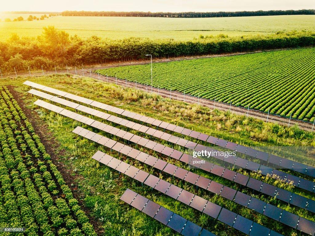 Solar power supply for the farm : Stock Photo