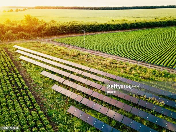solar power supply for the farm - sustainability stock photos and pictures