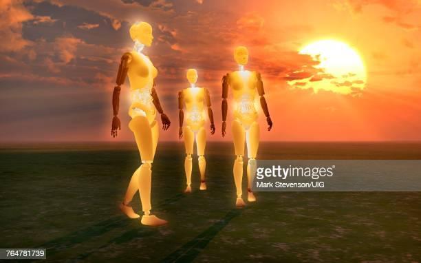 Solar Powered Robots.