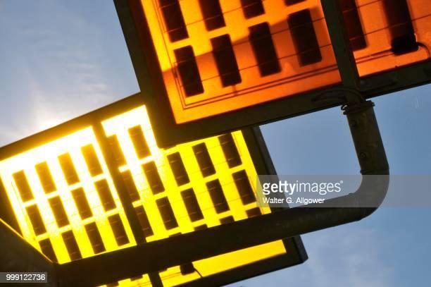 Solar tree in Solar City, Ulm residential quarter, Ulm, Baden-Wuerttemberg, Germany