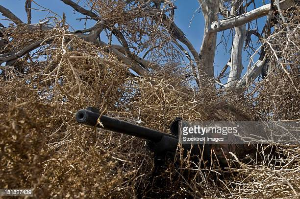Soldier demonstrates how camouflaged ghillie suits blend into their surroundings.