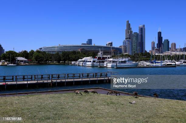 Soldier Field, home of the Chicago Bears football team, photographed from Burnham Harbor in Chicago, Illinois on July 22, 2019.