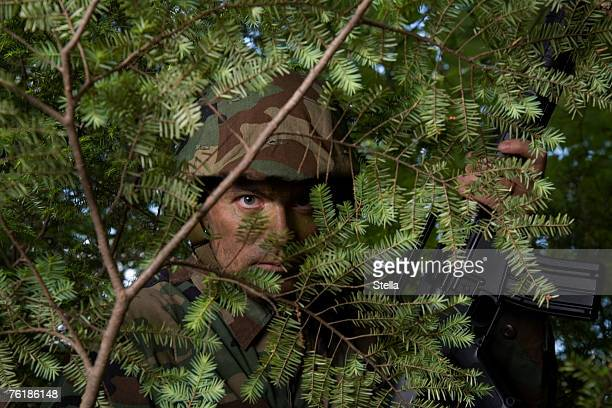 soldier hiding behind a tree - camouflage clothing stock pictures, royalty-free photos & images