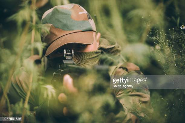 soldier hiding in grass - camouflage clothing stock pictures, royalty-free photos & images