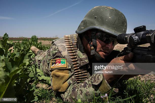 Soldier in the Afghan National Army's 6th Kandak aims his weapon during a joint patrol with United States forces, after an improvised explosive...