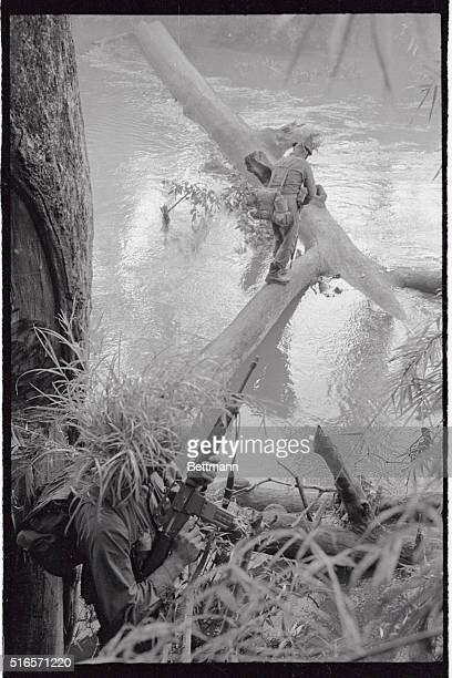 A soldier in the Air Cavalry Division crosses a stream on a fallen tree while a fellow soldier with a camouflage helmet covers him from the back The...