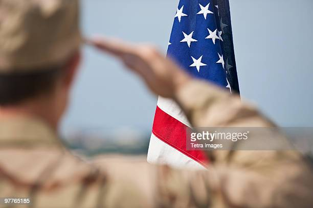 soldier saluting - american culture stock pictures, royalty-free photos & images