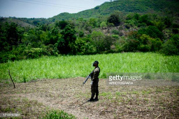 A soldier wearing a face mask patrols a field to insure people comply with the government issued lockdown on May 18 2020 in Cuscatlan El Salvador The...