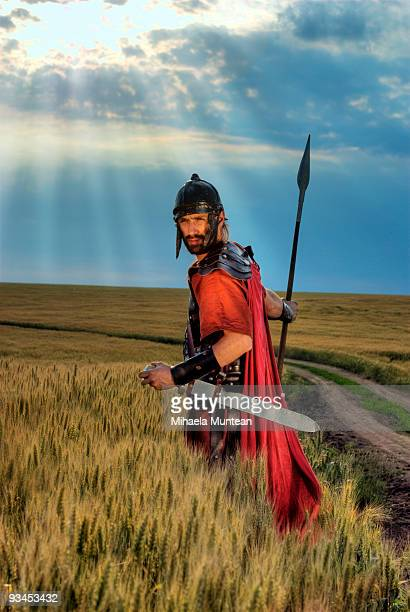 A soldier with a sword in a wheat field