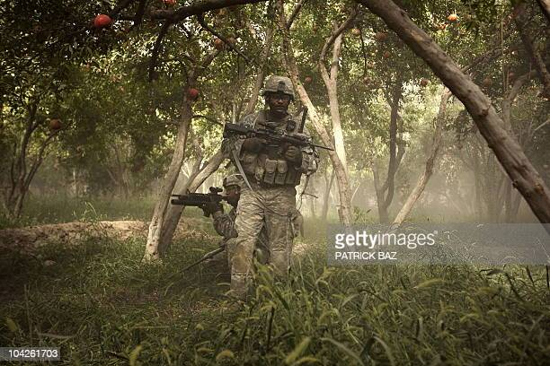 Soldier with the 101st Airborne Division 1-320th Alpha Battery patrols a pomegranate orchard in Chahar Qolbah, a hamlet on the outskirts of the...
