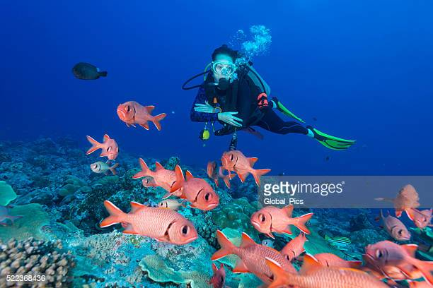 Soldierfish and diver - Palau, Micronesia