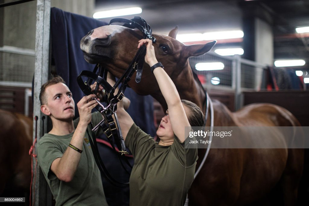 Soldiers from the King's Troop Royal Horse Artillery prepare the horses at Wellington Barracks ahead of their 70th anniversary parade on October 19, 2017 in London, England. Queen Elizabeth II will review the King's Troop Royal Horse Artillery to mark the 70th anniversary in Hyde Park today. 'The Troop' is a ceremonial mounted unit made up of 111 horses and a number of First World War state saluting guns which are fired during Royal Anniversaries and State Occasions.