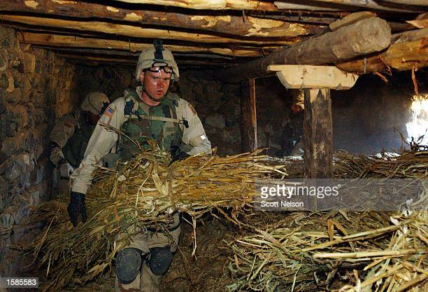 Soldiers from the U.S. Army 82nd Airborne Division search haystacks after finding hidden weapons among them during a sweep of homes November 2, 2002...