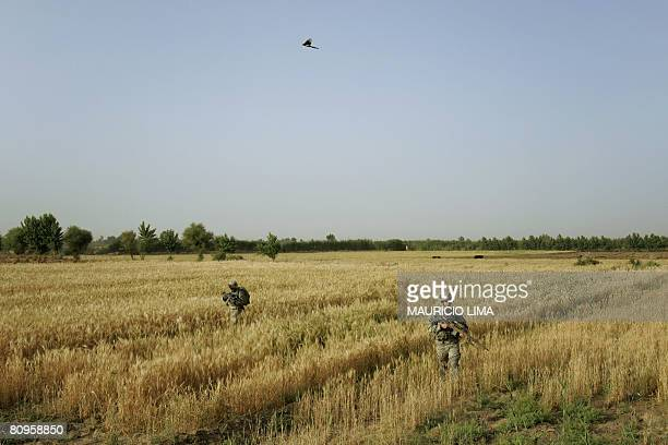 Soldiers of 1st Battalion, 187th Infantry Regiment, 101st Airborne Division walk through a wheat field during an air assault in Al-Rudwaniyah, on the...