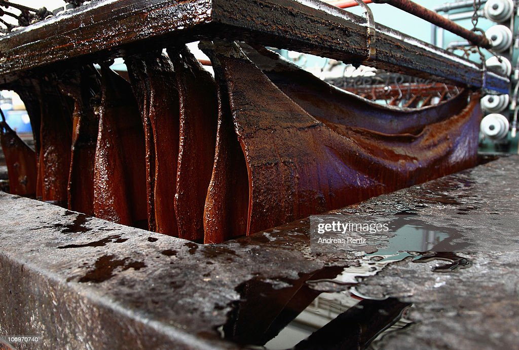 Sole leather (calf leather) is pictured during a tanning process at the LGR (Lederinstitut Gerberschule Reutlingen) tannery school on November 17, 2010 in Reutlingen, Germany. Sole leather arises in the process of cavern tanning and is the protracted time tanning. The LGR school, established in 1954, is among the few tannery schools left worldwide in a profession that some see as dying out. Demand for LGR training, however, is high, and 40% of LGR students come from abroad. The school has invested heavily into high-tech processes that allow precision engineering of leather products as leather products are rising annually by 10% worldwide. The LGR school is located in southwestern Germany in a region with a rich tradition in leather and textile manufacturing.