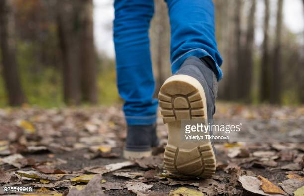 sole of shoe of caucasian boy walking on autumn leaves - fall back stock photos and pictures