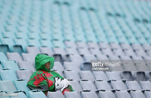 Sole Rabbitohs fan sits in the stands prior to the round 1 NRL match between the South Sydney Rabbitohs and the Cronulla Sharks at ANZ Stadium on...