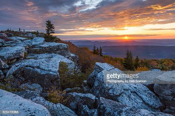 solemn sunrise - monongahela national forest stock photos and pictures