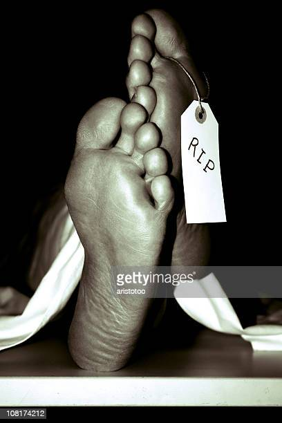 """soles of feet with toe tag reading """"rip"""", sepia toned - hospital morgue stock photos and pictures"""