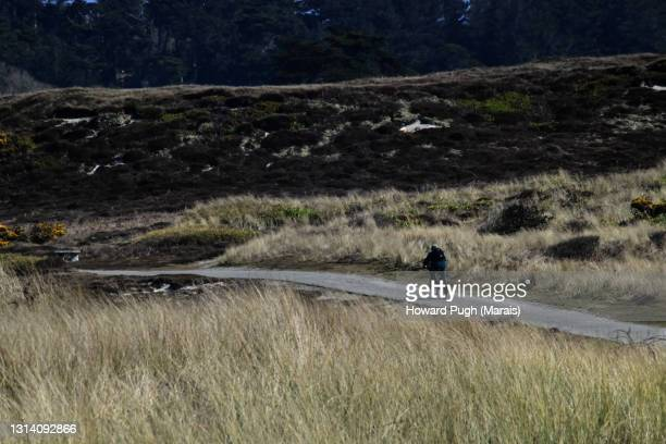 solitary island cyclist - howard pugh stock pictures, royalty-free photos & images