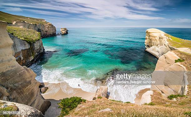 Solitary person on the rocky cliffs of the Pacific coast in the distance, bay at Tunnel Beach, Dunedin, Otago Region, South Island, New Zealand