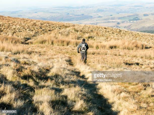Solitary walker on the moor near Garn Gron, Ceredigion.The Cambrian Way, Wales, UK