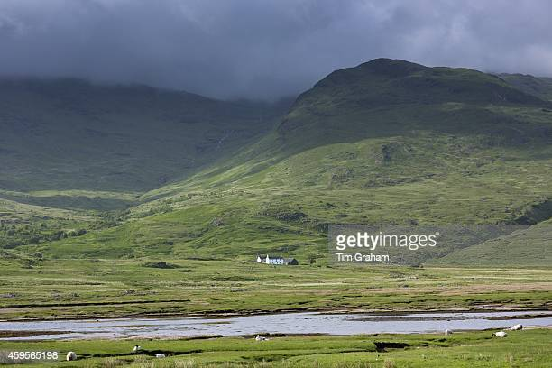 Solitary white croft farmhouse and farm barn nestling below mountain range by loch under moody sky on Isle of Mull in the Inner Hebrides and Western...