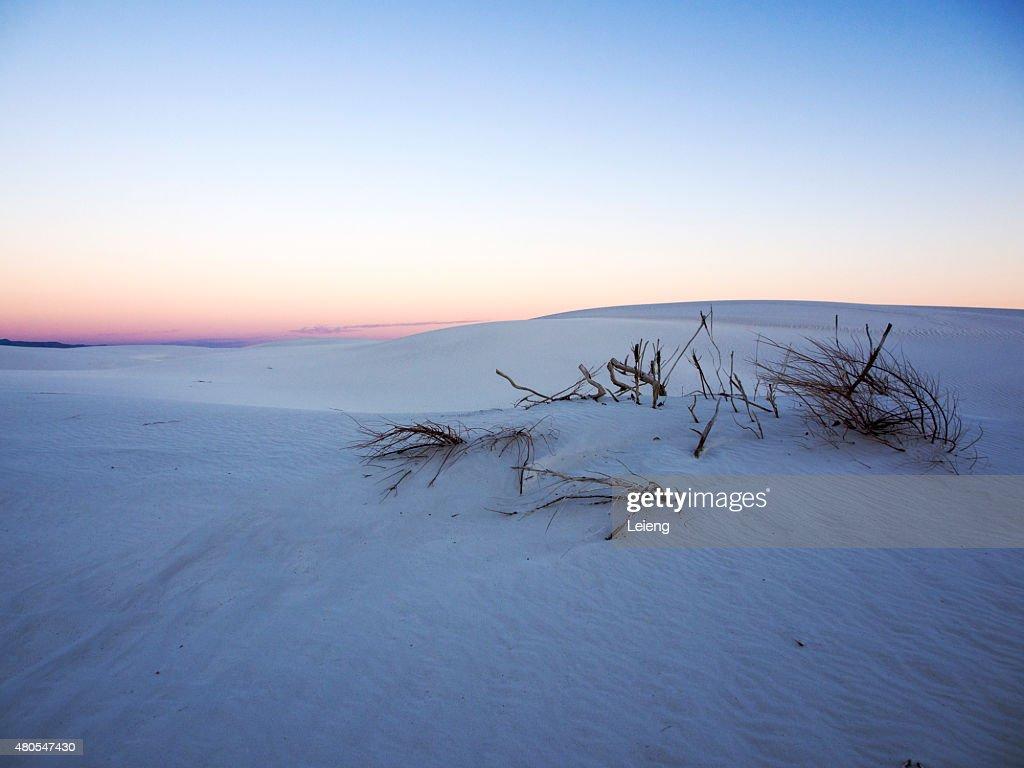 Solitude : Stock Photo