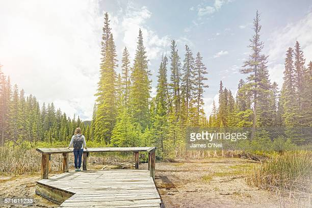 Solo female traveller on pier looking at forest