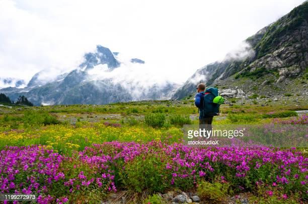 solo hiking adventure in the mountains - area selvatica foto e immagini stock