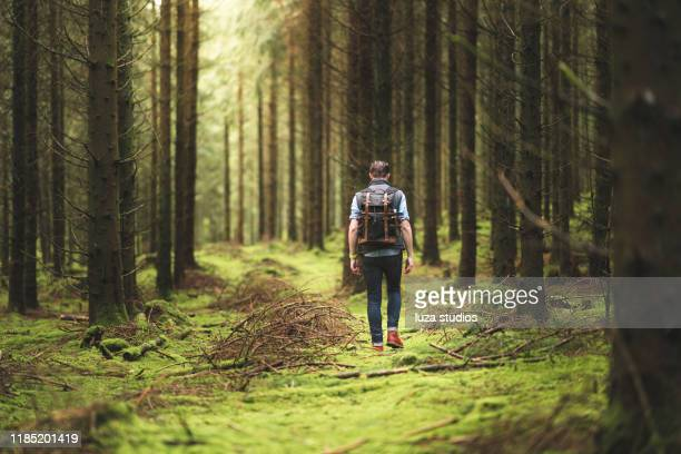 a solo traveler enjoying the scandinavian nature - sweden stock pictures, royalty-free photos & images