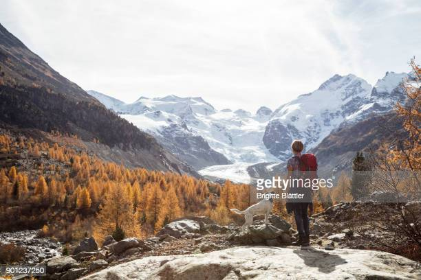 solo traveller hiking in switzerland - one animal stock pictures, royalty-free photos & images