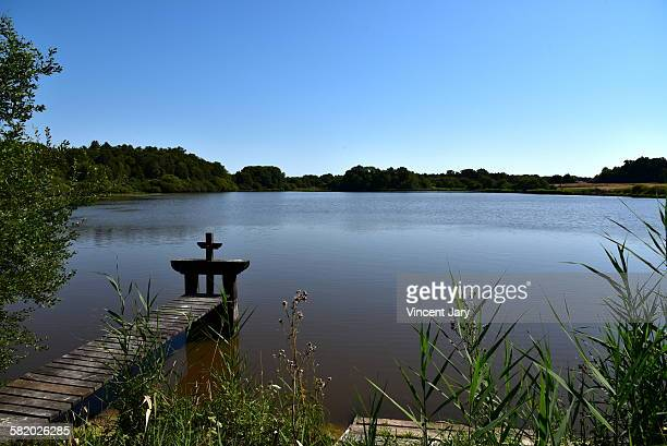 sologne pond - sologne stock photos and pictures
