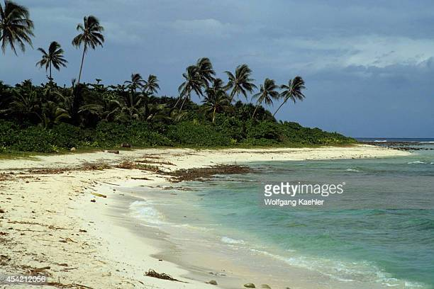 Solomon Islands Santa Ana Island Beach With Coconut Palm Trees