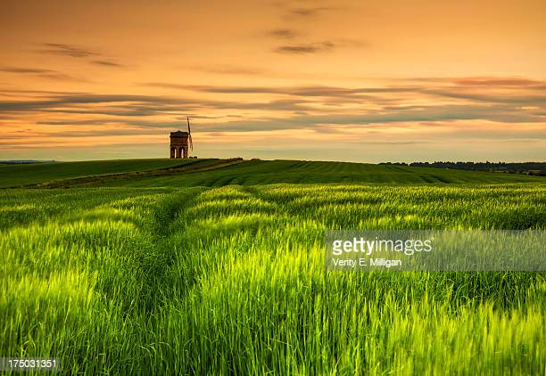 solstice sunset over chesterton windmill - chesterton stock photos and pictures