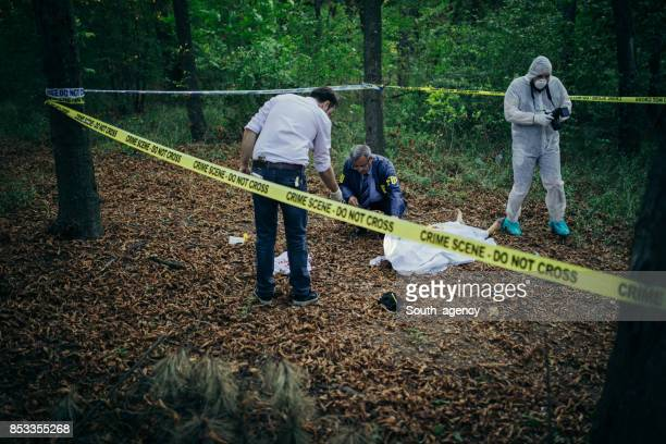 solving a murder - crime scene stock pictures, royalty-free photos & images