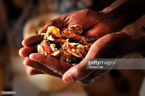 Somali dealers for natural resins present Frankincense at stores in Bosaso, Puntland