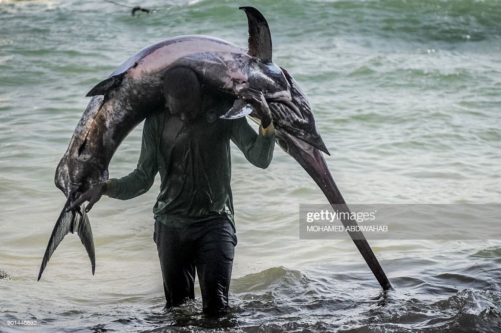SOMALIA-FISHING-FEATURE : News Photo