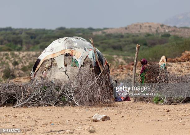 A somali hut called aqal in the desert Togdheer region Burao Somaliland on November 16 2011 in Burao Somaliland