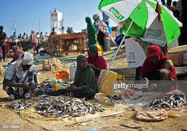 Somali vendors sell fish at Bosaso beach in Puntland northeastern Somalia on December 17 2016 Fishermen bring fish to the market for traders as they...