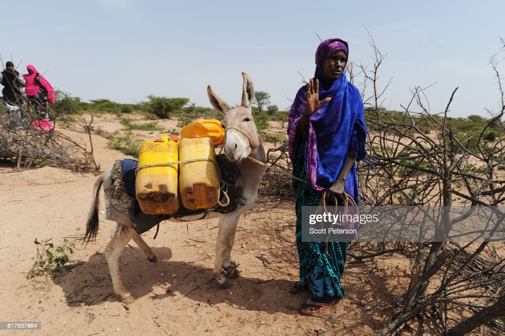 A Somali woman gestures after filling water cans tied to a donkey at a traditional cistern for harvesting rainwater, called a berkad, made by the Irish charity Concern-Worldwide as the Horn of Africa faces severe drought in Carro-Yaambo, a village 20 miles west of the capital Hargeisa, Somalia, on June 21, 2017. The United Nations and NGOs have sought to raise resilience in pastoralist communities that have seen their lifeblood herds of camels, goats and sheep decimated by up to 80 percent, leaving 6.7 million people in need of assistance to avoid famine in Somalia and Somaliland.