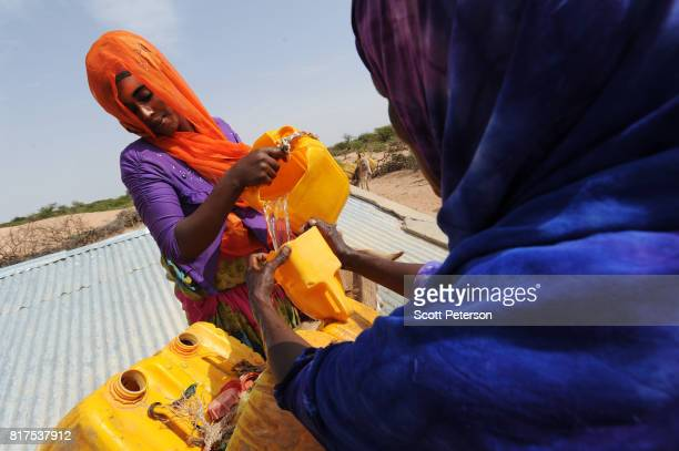 Somali women fill water cans tied to a donkey at a traditional cistern for harvesting rainwater called a berkad made by the Irish charity...