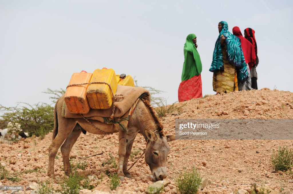 Somali women gather to fetch water at a traditional cistern for harvesting rainwater, called a berkad, made by the Irish charity Concern-Worldwide as the Horn of Africa faces severe drought in Gorey, an area 30 miles west of the capital Hargeisa, Somalia, on June 21, 2017. The United Nations and NGOs have sought to raise resilience in pastoralist communities that have seen their lifeblood herds of camels, goats and sheep decimated by up to 80 percent, leaving 6.7 million people in need of assistance to avoid famine in Somalia and Somaliland.