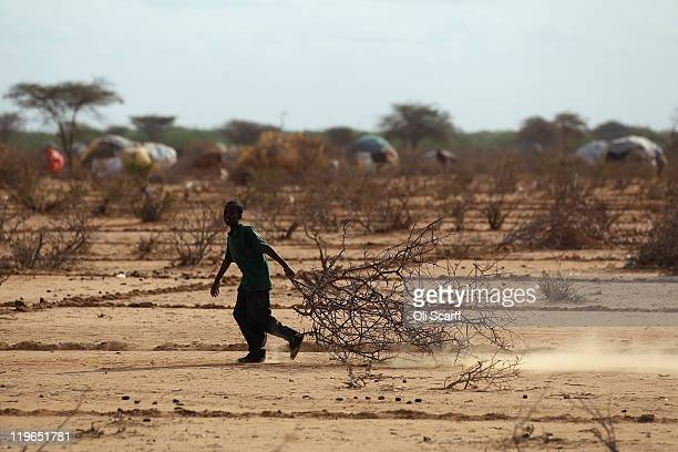 Somalian refugee boy collects firewood on the outskirts of the IFO refugee camp which makes up part of the giant Dadaab refugee settlement on July 23...
