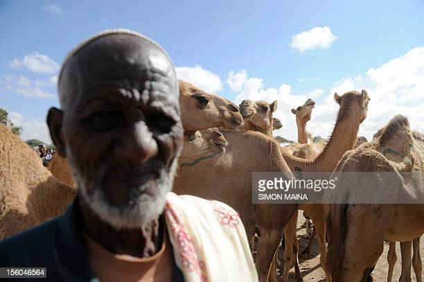 A Somaliland farmer Abdi Khadir arrives with his herd of camels to find a buyer on October 292012 at Sayladah market in Hargeisa Somaliland to...