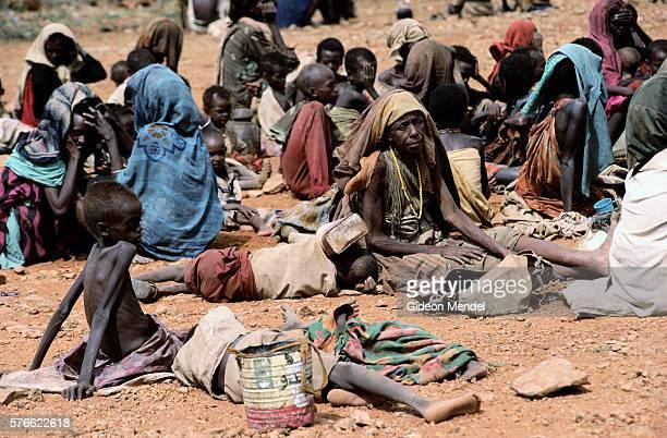 somalis in refugee center - famine photos et images de collection