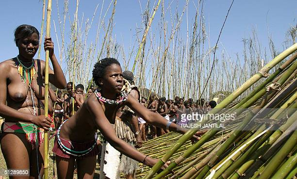 Some 7000 young women leave their reeds at Zulu King Goodwill Zwelethini's Enyokeni Royal Palace in KwaNongoma some 350 kilometres north of Durban 11...