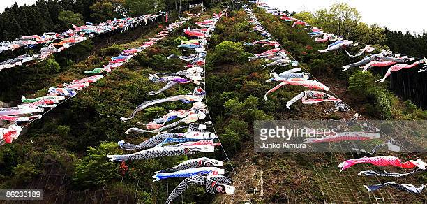 Some 800 colourful carp streamers are hung over the Kanna river during Carp Streamer Festival on April 27 2009 in Kanna Gunma Prefecture Japan People...